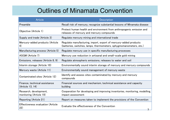 First page of Outlines of Minamata Convention