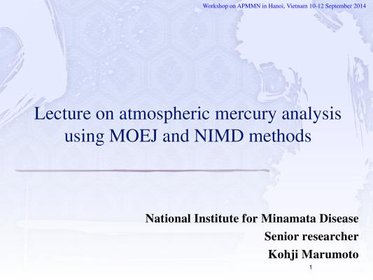 First page of Vietnum Hg analysis