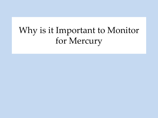 First page of Why Important to Monitor for Mercury